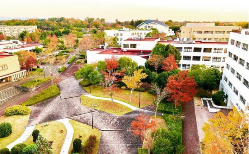 2021web_3_campuslife.png
