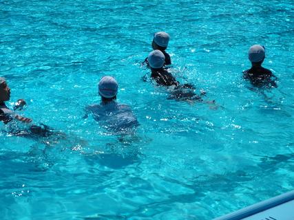 5年水泳その1.JPGのサムネール画像